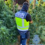 La Policía Nacional detiene a 11 personas en Antequera por su presunta vinculación con una trama criminal dedicada al tráfico de drogas